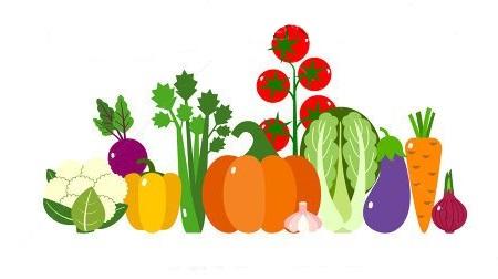 December vegetable plantingguide: