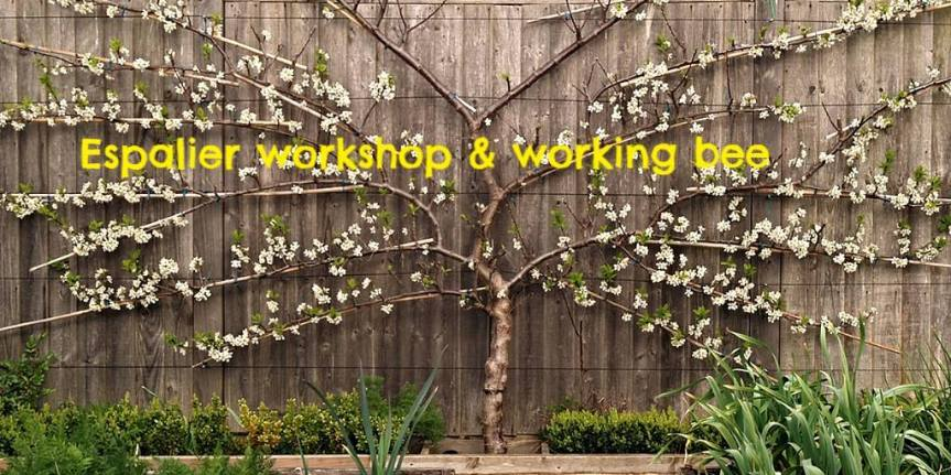 Espalier Workshop